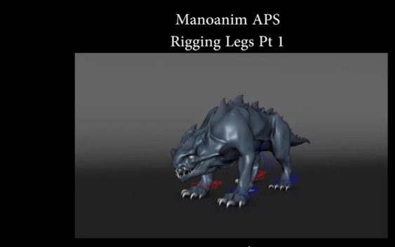 rig-legs